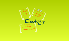 Biology Chapter 3 - Ecology