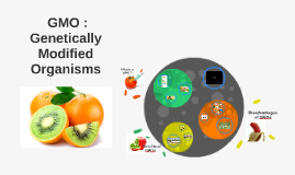 GMO :
