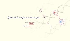 Copy of Efecto de la morfina en la sinapsis