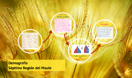 La Región del Maule es una de las quince regiones en las que