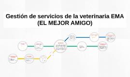 Copy of Gestión de servicios de la veterinaria EMA