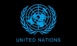 LU/UN Partnership