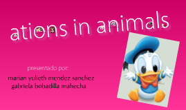ations in animals