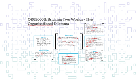 ORG20003: Bridging Two Worlds - The  Organisational Dilemma