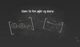Islam: 4 temaer (sharia, de fem søjler, islams hverdag og sufisme)