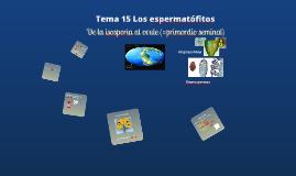 2017. Los espermatófitos (T19) para Ambientales