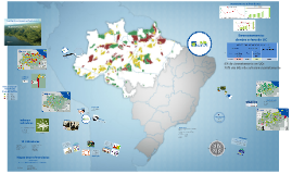 Banco Mundial 17-3-2014 - Auditoria Coordenada Amazônia