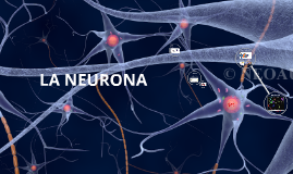 Celulas del tejido nervioso