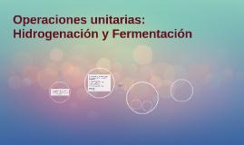 Operaciones unitarias: Hidrogenación y Fermentación