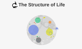 The Structure of Life