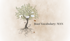 Root Vocabulary: MAN