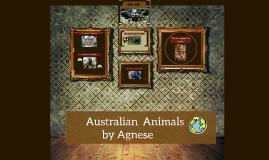 Australia' n animal by Agnese