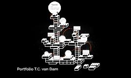 Portfolio T.C. van Dam