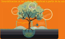 E2 B2 P6 Diversificación de las formas lingüísticas a partir de su uso