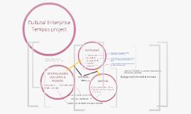 Copy of Cultural Enterprise