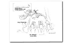 Copy of Mathematweets