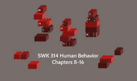 SWK 314 Human Behavior Part II