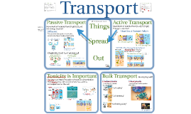 Copy of AP Bio- Matter 4:  Transport