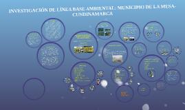INVESTIGACIÓN DE LÍNEA BASE AMBIENTAL: MUNICIPIO DE LA MESA-