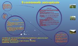 Copy of  Ecosistemele antropizate