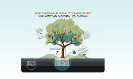 Copy of NORMATIVIDAD AMBIENTAL COLOMBIANA