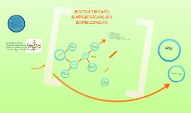 ESTRATEGIAS ESPECIFICAS
