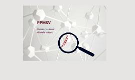 Úvod do PPMSV