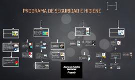 Estructura metodologica de los programas de seguridad e higiene