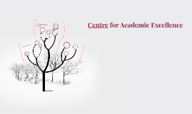 Centre for Academic Excellence