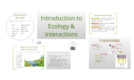 BI 4: Intro to Ecology & Interactions