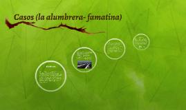 Casos (la alumbrera- famatina)