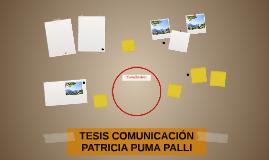 TESIS COMUNICACIÓN