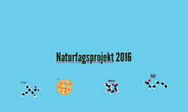 Naturfagsprojekt