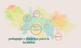 Pedagogia y didáctica para la inclusión