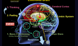 The interaction between cognition and emotion