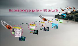 The evolutionary sequence of life on Earth