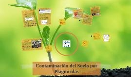 Contaminación del Suelo por Plaguicidas