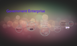 Government Enterprise
