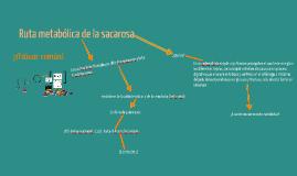 Copy of Ruta Metabólica de la Sacarosa