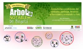 Árbol Notable de Bogotá 2015
