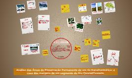 Análise das Áreas de Preservação Permanente nas margens do r