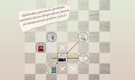 Habilidades y procesos de aprendizaje