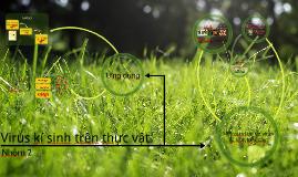 Copy of Virus kí sinh trên thực vật