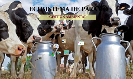 Copy of ECOSISTEMA DE PARAMO
