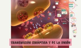 Copy of transmisión sináptica y de la unión