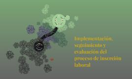 Copy of Implementación, seguimiento y evaluación del proceso de inse