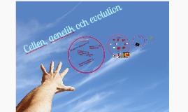 Cellen, genetik och evolution
