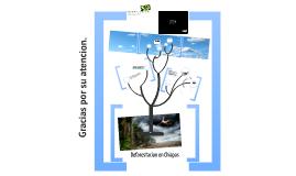 Deforestacion en Chiapas - Aprender a Aprender