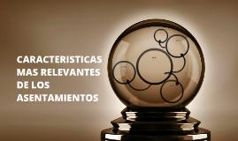 CARACTERISTICAS MAS RELEVANTES DE LOS ASENTAMIENTOS