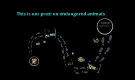 Endagered Animals